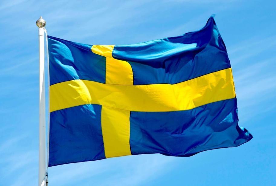 Risultati immagini per bandiera svedese