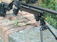 Spara al vicino con arma ad aria compressa: denunciato