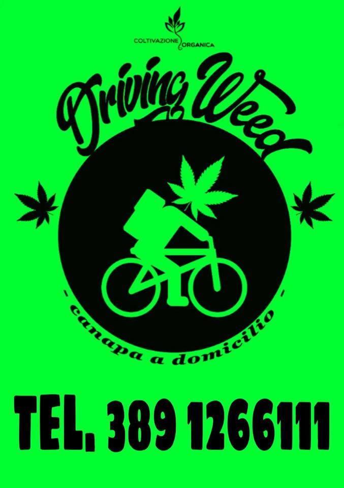 Cannabis light come la pizza si ordina al telefono e la for Domicilio legale