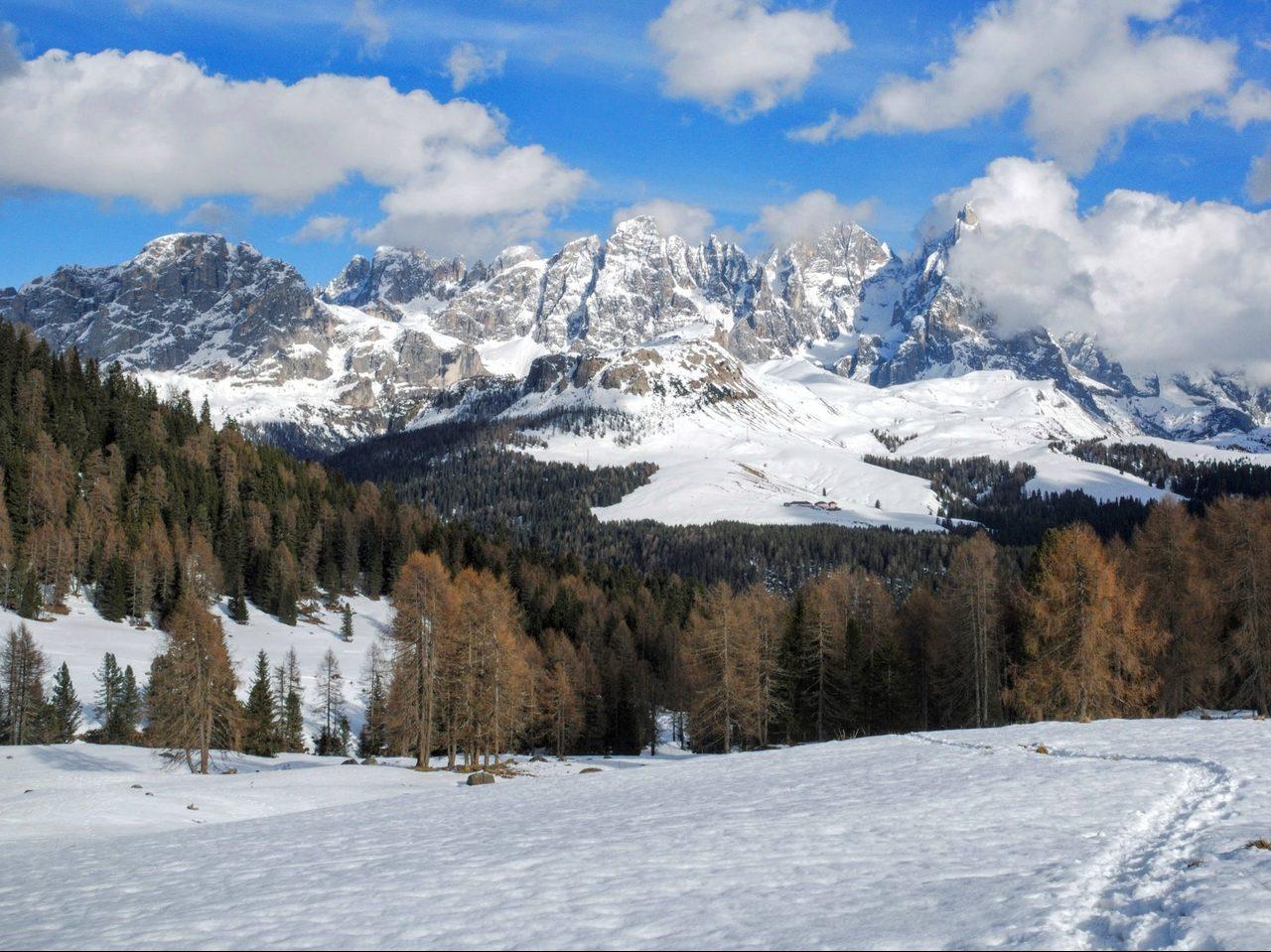 Il parco naturale di Paneveggio Pale di San Martino (web)