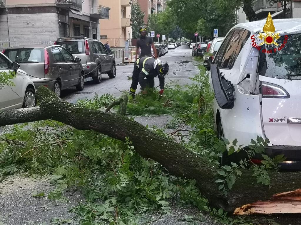 Verona, maltempo: decine di interventi dei Vigili del fuoco ...